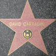 David Carradine's Star at the Hollywood Walk of Fame — Stock Photo #29285893