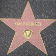 Kim Basinger's Star at the Hollywood Walk of Fame — Stock Photo