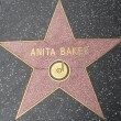 Anita Baker's Star at the Hollywood Walk of Fame — Stock Photo