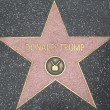 Stock Photo: Donald Trump's Star at Hollywood Walk of Fame