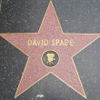 David Spade's Star at the Hollywood Walk of Fame — Stock Photo #29286085