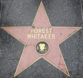 Forest Whitaker's Star at the Hollywood Walk of Fame — 图库照片