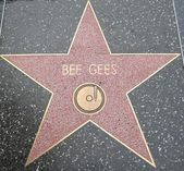 Bee Gees' Star at the Hollywood Walk of Fame — 图库照片