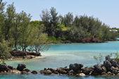 Bermuda — Stockfoto