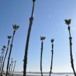 Oceanside in California — Stock Photo #38354277