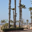 Oceanside in California — Stock Photo #38354315
