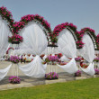 Stock Photo: Dubai Miracle Garden in UAE