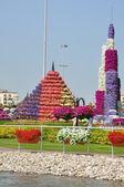 Dubai Miracle Garden in the UAE — Stock Photo