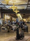 ドバイ、アラブ首長国連邦のドバイ ・ モールでゴールド スーク — ストック写真