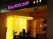 Rosa Mexicano at Dubai Mall in the UAE — Foto Stock