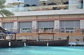 Festival merkezi waterfront dubai, birleşik arap emirlikleri — Stok fotoğraf