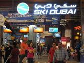 ドバイ、アラブ首長国連邦のスキー ・ ドバイ — ストック写真