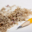 Yellow pencil and shavings — Stock Photo