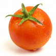 One fresh tomato — Stock Photo