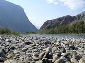 Tchulyshman river — Stock Photo