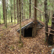 Foto Stock: Forest dwelling
