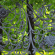 Part of Mikhailovsky (Michael) garden fence — Stock Photo #29084851