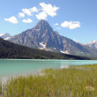 Stock Photo: CanadiRockies Waterfowl Lake