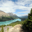 Glacier fed lake — Stock Photo