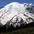 Stock Photo: Mt. Rainier