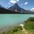 Stock Photo: Waterfowl Lake Icefields