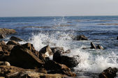 California coast — Stock Photo