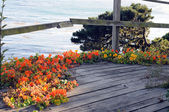 Blumen aus holz — Stockfoto