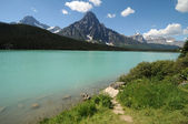 Waterfowl Lake Icefields — Stock Photo