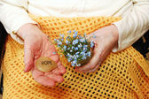 Hope and Forget-Me-Not Flowers — Stock Photo