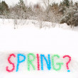 Spring Word Spelled in Snow — Stock Photo