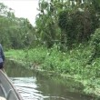 Stock Video: Canoeing Amazon rivers