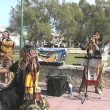 Incmusical group performing in Palmpark. — Stock Video #12904545