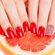 Hands with red nails lie on grapefruit - Stock Photo