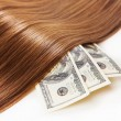 Stock Photo: Hair on money