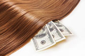 Hair on the money — Stock Photo