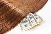 Hair on the money — Stock Photo