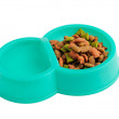 Stock Photo: Pet food and water
