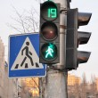 Traffic lights — Stock Photo #30446613