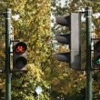 Two traffic lights  — Stock Photo