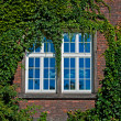 Wall with a window  — Stock Photo