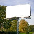 Stock Photo: Large billboard