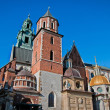 Wawel Castle — Stock Photo