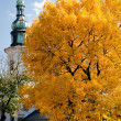 Stock Photo: Yellow tree