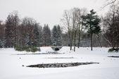 Lazienki Park — Stock Photo