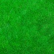 Green grass — Foto Stock #30810433
