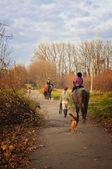 As pessoas montam cavalos — Foto Stock