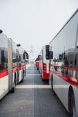 Buses in the Parking lot in Dubai — Stok fotoğraf