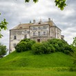 Old castle on the hill — Stock Photo #50005419