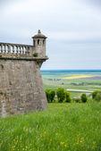 Old Pidhirtsi Castle — Stockfoto
