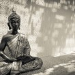 Thai Buddha — Stock Photo #13696669